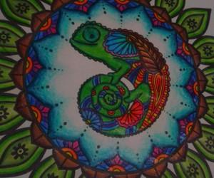 camaleao and mandalas image