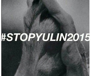 dog, 2015, and stop image