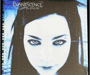 fallen, amy lee, and evanescence image