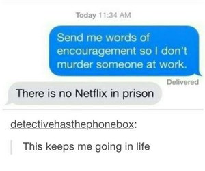 funny, netflix, and lol image