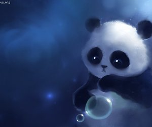 panda, cute, and bubbles image