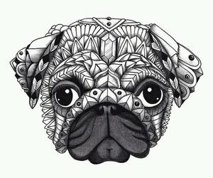 dog, drawing, and pug image