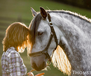 beautiful, equestrian, and friendship image