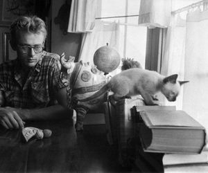 james dean, cat, and black and white image