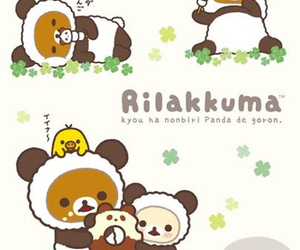 kawaii, cute, and bear image