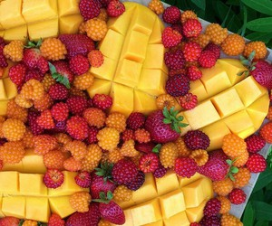 food, summer, and FRUiTS image