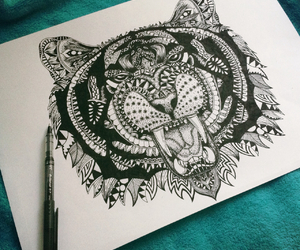 animal and draw image