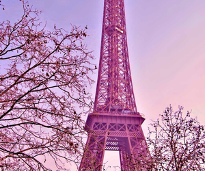 paris and trees image