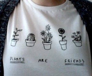 plants, grunge, and friends image