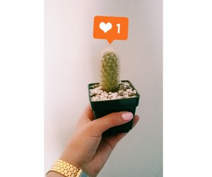 baby, cactus, and friend image