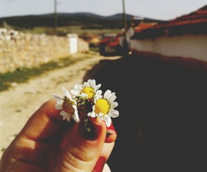 adventure, flower, and grunge image