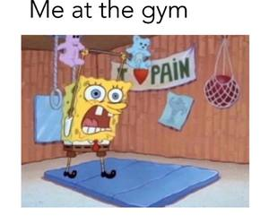 gym, funny, and lol image