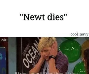newt, the maze runner, and funny image