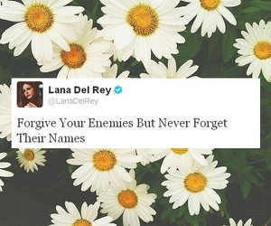 lana del rey, enemy, and quotes image