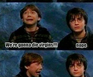 funny, ginny, and harry potter image