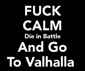 meme, valhalla, and fuck calm! image