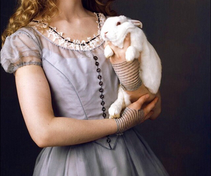 alice in the wonderland, heart, and rabit image