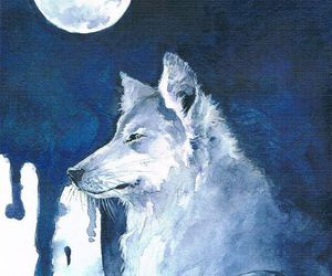 wolf, animals, and moon image