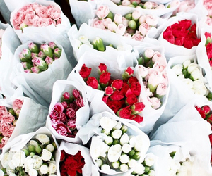 bouquet, peonies, and romance image