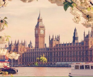london, flowers, and pretty image