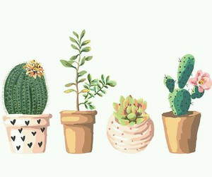 cactus, plants, and art image