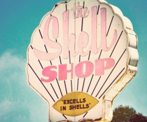 pink, places, and the shell shop image