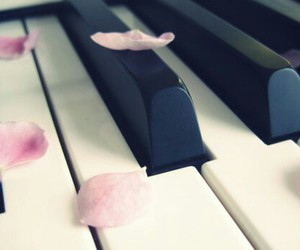flower, piano, and music image