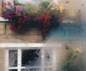 rain, flowers, and window image