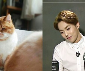 exo, xiumin, and cute image