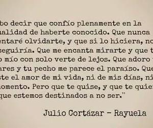 love, rayuela, and book image