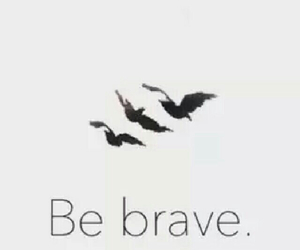brave and birds image