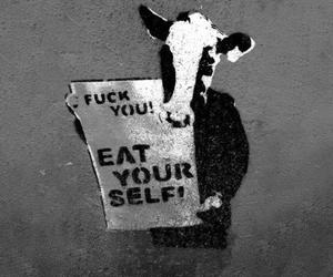 cow, graffiti, and vegetarian image