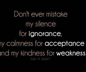 quote, ignorance, and silence image