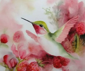 humming bird and pink image