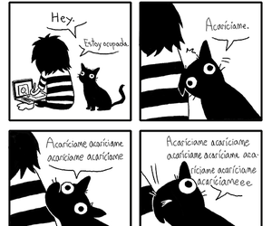 funny, cat, and sarah andersen image