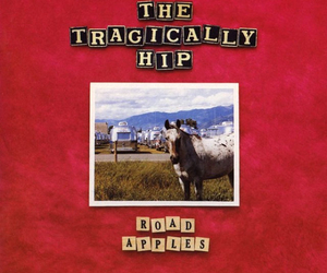 the tragically hip and road apples image