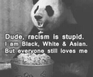 panda, racism, and black image