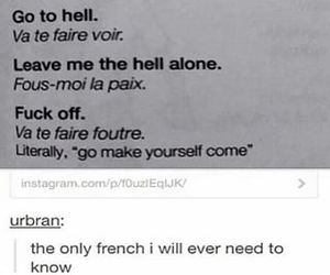 french, lol, and puns image
