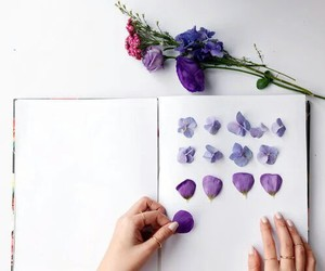 flowers, purple, and book image