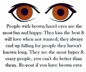 eyes, brown, and brown eyes image