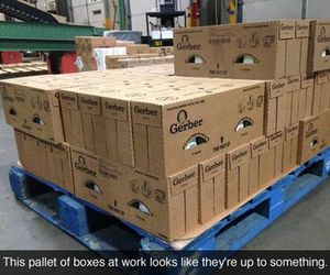 funny, boxes, and lol image