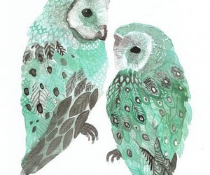 owls and mint image