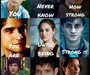 harry potter, teen wolf, and divergent image