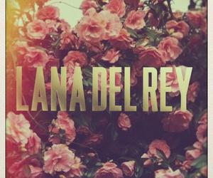 roses, lana del rey, and vintage image