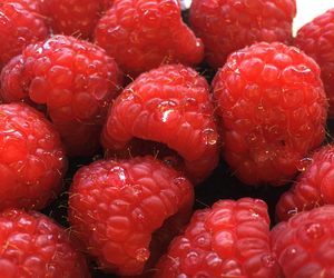 berries, fit, and food image