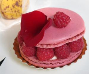 macaron and raspberries image