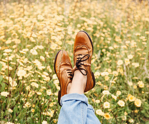 shoes, flowers, and nature image