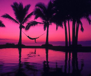 paradise, pink, and summer image