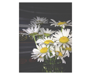colorful, flowers, and grunge image
