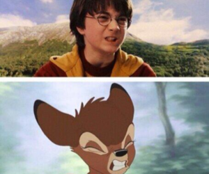 bambi, harry potter, and cute image